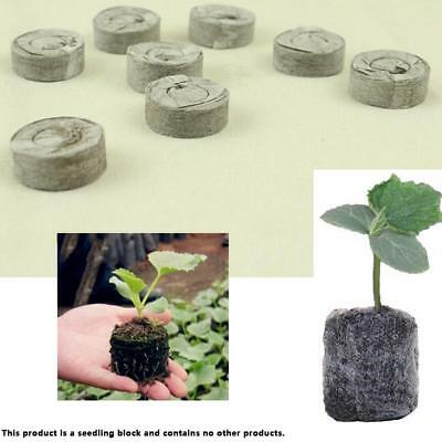 10pcs Nurry Breed Soil Block Garden Flower Planting Block Plant PRO de