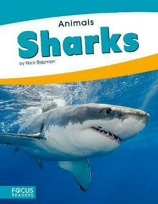 Animals: Sharks by Nick Rebman Paperback Book Free Shipping!