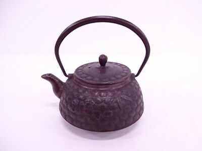 3760797: Japanese Iron Ware Nanbu Tekki / Kettle Chrysanthemum