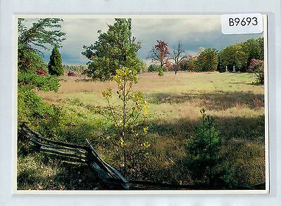 B9693fig USA Spotsylvania Battlefield Bloody Angle postcard