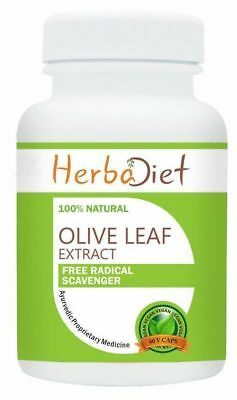 60 Capsules Olive Leaf Extract 20% Oleuropein 500mg Antioxidant Immune Support