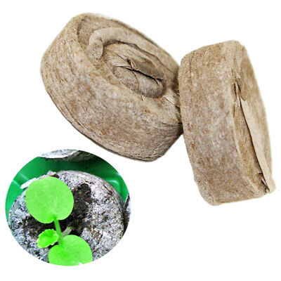 6pcs Peat Pellets Seed Starter Seedling 35mm Condense Soil Block Nursery_S