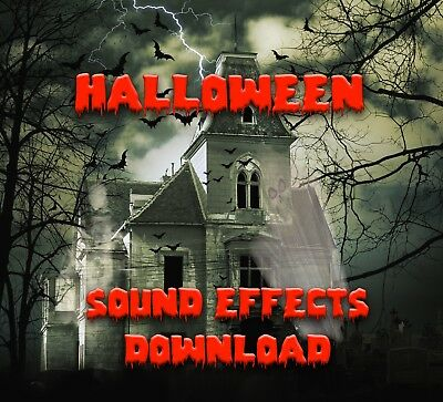 Scary Halloween Party Background Horror Sound Effects - Immediate Download!!