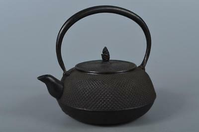 M2678: Japan Iron Arare pattern TEA KETTLE Teapot Tetsubin, Iwachu made Unused