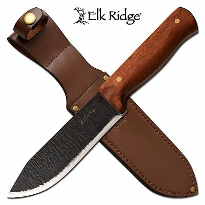 "Hunting Knife | Elk Ridge 5.5"" Carbon Steel Blade Skinner Full Tang Wood Handle"