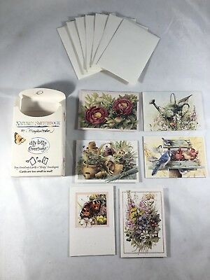MARJOLEIN BASTIN Itty Bitty Greetings Nature's Sketchbook 5 Cards & Envelopes