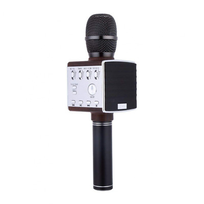 Wireless Karaoke Microphone With Speaker FM Bluetooth Professional