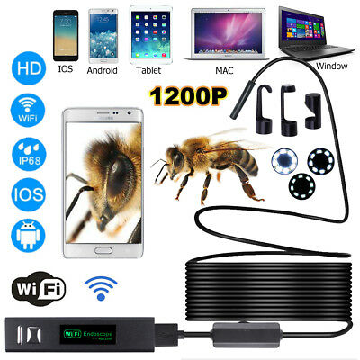8 LED Wireless Endoscope WIFI Borescope Inspection HD 1200P Camera Waterproof