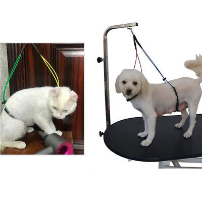 Pet Grooming No-Sit Haunch Holder, Dog Grooming Harness Leash