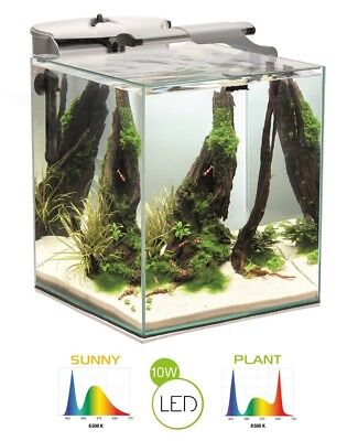 AQUAEL Aquarium SHRIMP SET DUO 49L inkl. LED Doppelbeleuchtung, Filter, Heizer