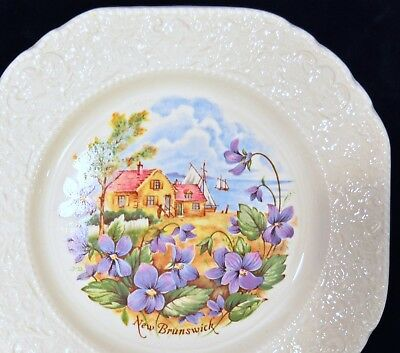 "BURLEIGH STAFFORDSHIRE SQUARE ""NEW BRUNSWICK"" PLATE - Violets and coastal scene"
