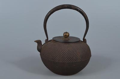 R2983: Japanese Old Iron Arare pattern TEA KETTLE Teapot Tetsubin w/copper lid