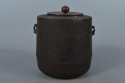M4224: Japanese Iron Bamboo sculpture TEAKETTLE Teapot Chagama w/copper lid