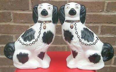 Antique Pair Of Staffordshire Pottery Black And White King Charles Spaniel Dog