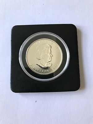 2009 1 Oz Canadian Silver Maple Leaf Coin Brilliant Uncirculated