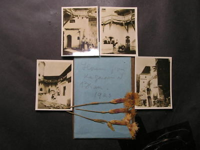 1923 Queen Marie of Romania Photos & Pressed Flowers from the Garden at Bran