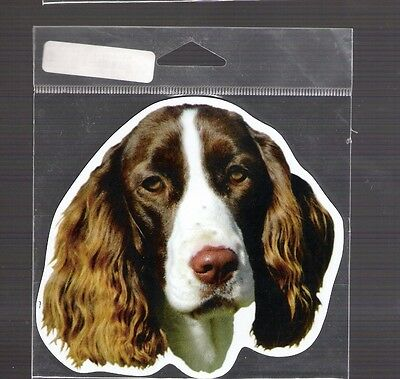 English Spaniel 4 inch face magnet for car or anything metal     New