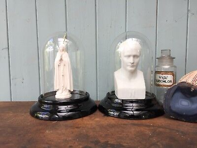 Pair Vintage Display Domes Black Glass Plinths Taxidermy Collectables