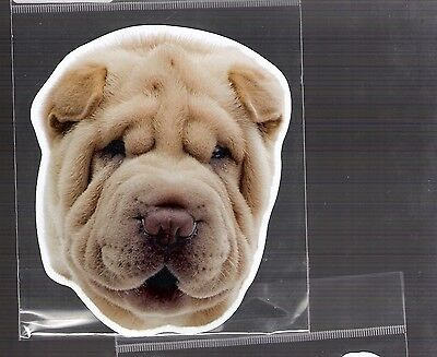 Shar Pei 4 inch face magnet for car or anything metal     New