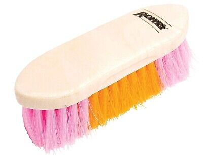 Roma 2 Tone Neon Dandy Brush for Horse Grooming - Assorted Colors, Large