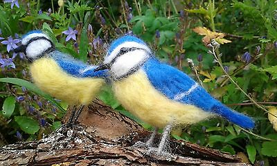 Gift Boxed Needle felting kit Blue Tit