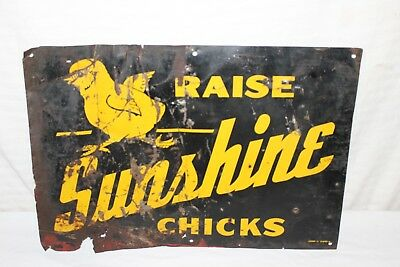 "Vintage 1940's Sunshine Chicks Chicken Farm Feed Seed 20"" Metal Sign"