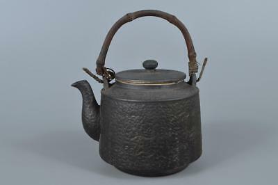R2641:Japanese Seto-ware rough surface Arabesque sculpture TEAPOT Tea Ceremony