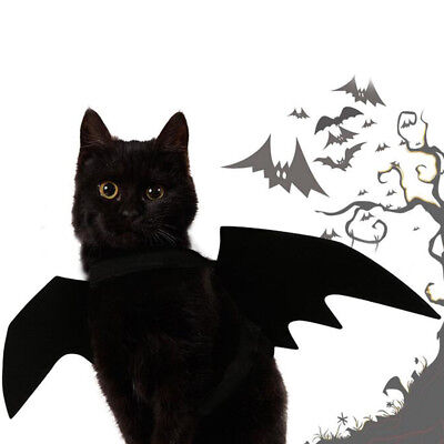Lovely for small pet dog cat bat wings halloween wings halloween costume_S