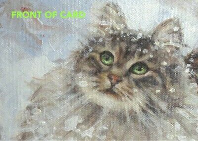 Maine Coon Cat CHRISTMAS CARDS 16 Boxed Cards & Envelopes Sweet Green-Eyed Kitty