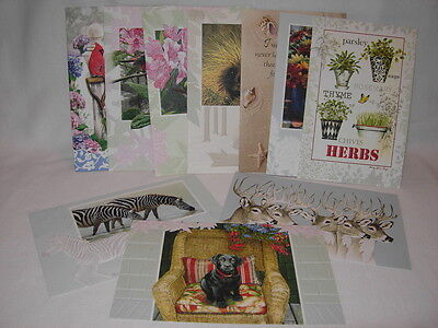 pumpernickel press lot of 10 assorted greeting cards see