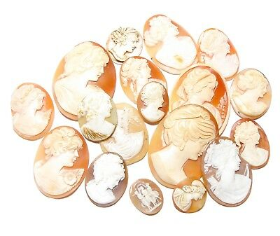Collection Of Old Carved Shell Cameos From Brooches For Spare  (B16)
