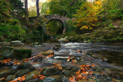 RIVERS BRIDGES AUTUMN STONES FORES- CANVAS PRINT READY TO HANG or ROLLED FROM A4