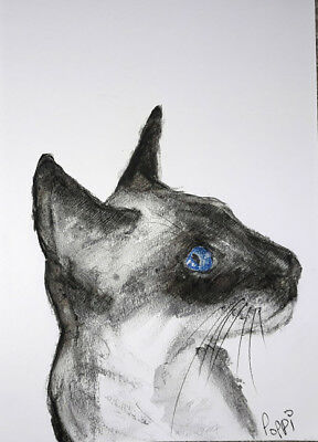 ORIGINAL ART DRAWING * Charcoal on Art paper * SIAMESE CAT   * Art By Poppi