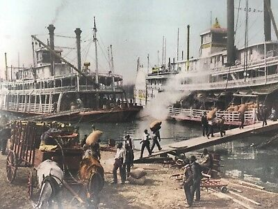 Steamers Mississippi River Landing Postcard Dock Workers Horse Carriage