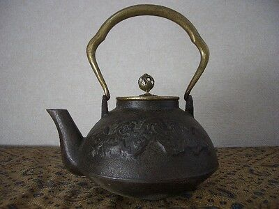 Tetsubin Iron Tea kettle (18)