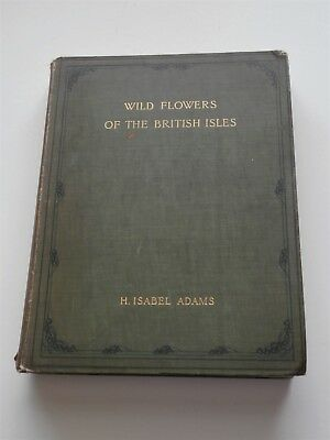 Wild Flowers of the British Isles by H.Isabel Adams 1907 First Edition
