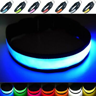 Super Bright USB Rechargeable LED Dog Safety Collar - Great Visibility & Improve