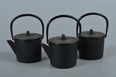R4001: Japanese Iron Poetry sculpture Shapely Iron-shaped TEAPOT Sencha 3pcs