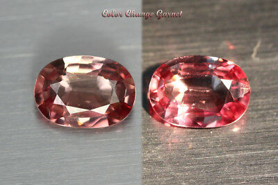 1.325 Ct Rare Natural From Earth Mined *color Change Malaya Garnet* Aaa+ Gem~!!!