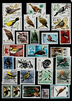 BIRDS Thematic STAMP Colllection Majority EUROPEAN Issues REF:TS801
