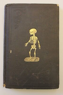 1851 Anatomical Atlas, Rare Illustrated Cover, Over 600 Illustrations