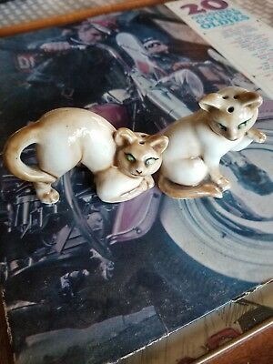 Siamese Cat Salt And Pepper Shakers