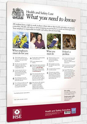 Genuine Health and Safety HSE Law Poster - A3 Version