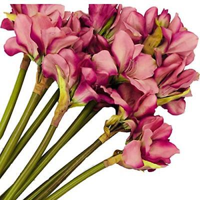 Live with Love artificial Flor Clivia perfecto para boda, novia, fiesta, (Rosa)