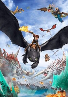HOW TO TRAIN YOUR DRAGON 2 Movie PHOTO Print POSTER Film Art Hiccup Toothless 01