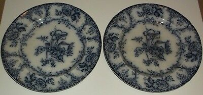 Pair Of Antique Victorian 19Th Century Collectible Flow Blue Plates
