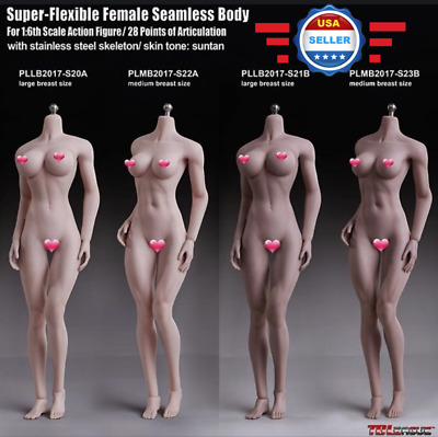 【EXPEDITED SHIPPING 】PHICEN TBLeague 1/6 Female SEAMLESS MUSCLE Body