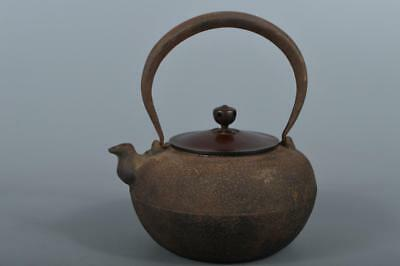 R4285: Japanese XF Old Iron Shapely TEA KETTLE Teapot Tetsubin Tea Ceremony