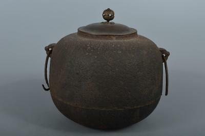 R4283: Japanese Iron Shapely TEAKETTLE Teapot Chagama Tea Ceremony