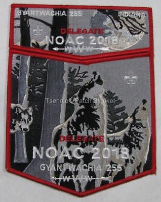 Gyantwachia Lodge 255 2018 Noac 2-piece Mint Condition FREE SHIPPING